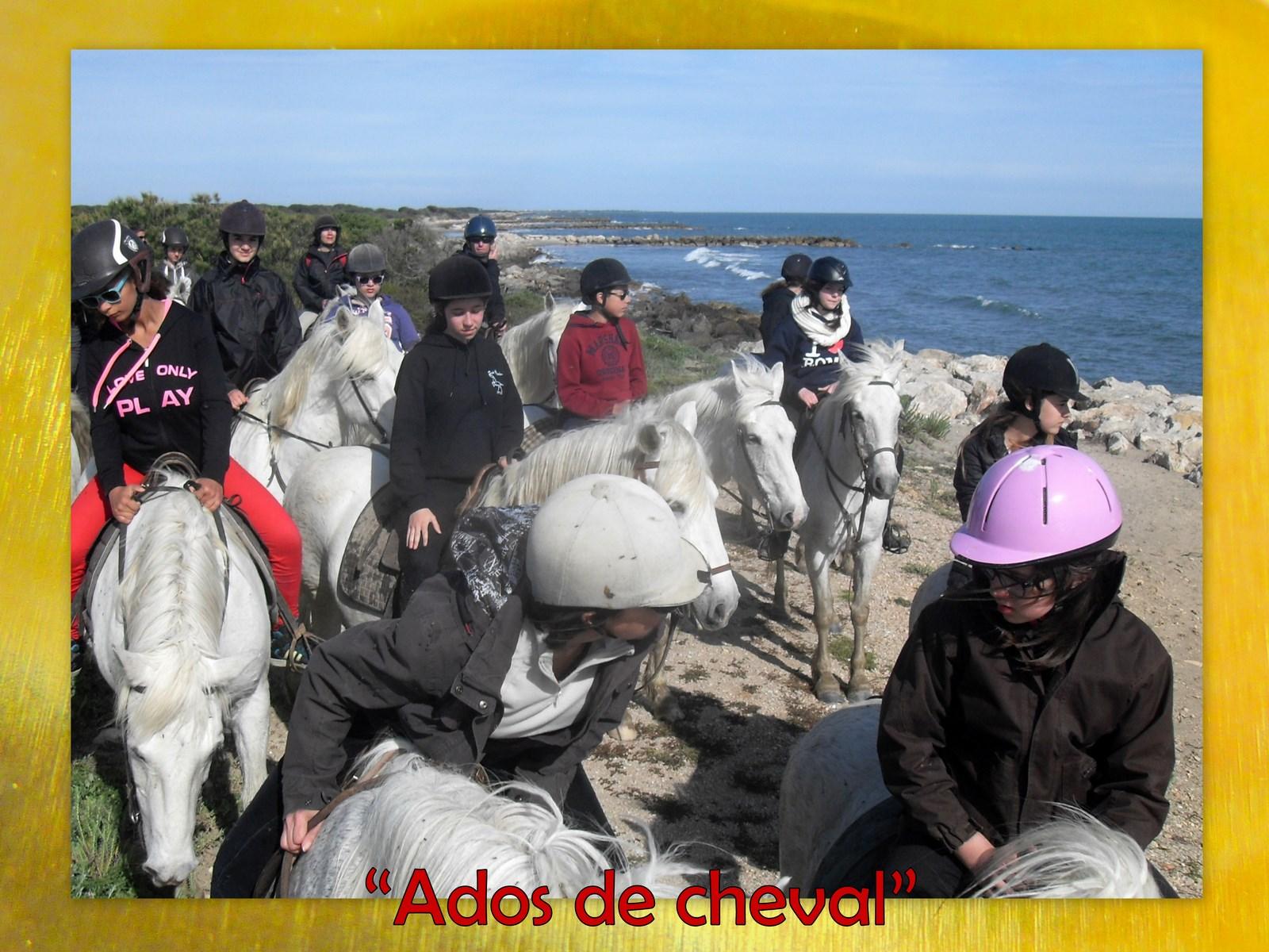 Ados cheval (1)