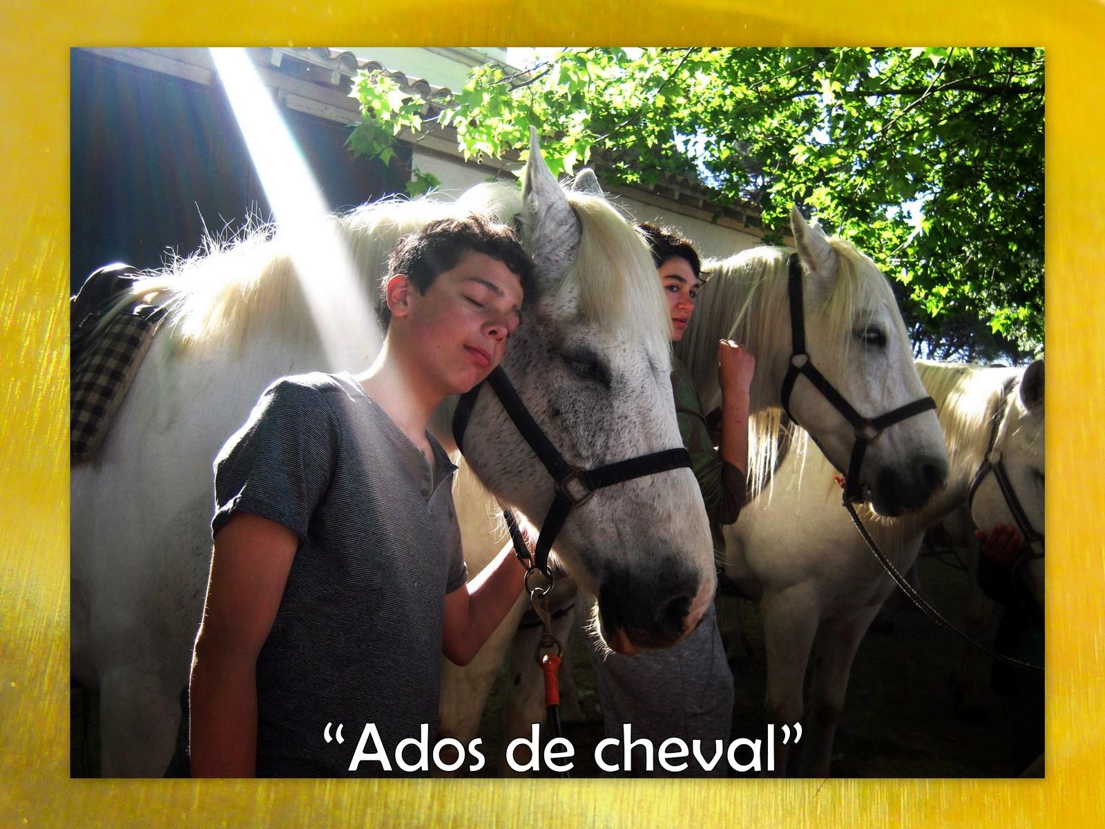 Ados cheval1