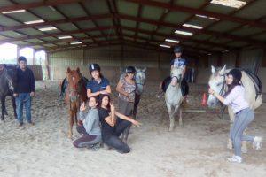 Ados de cheval