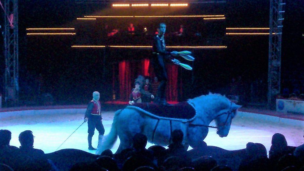 Cirque Noël 2016