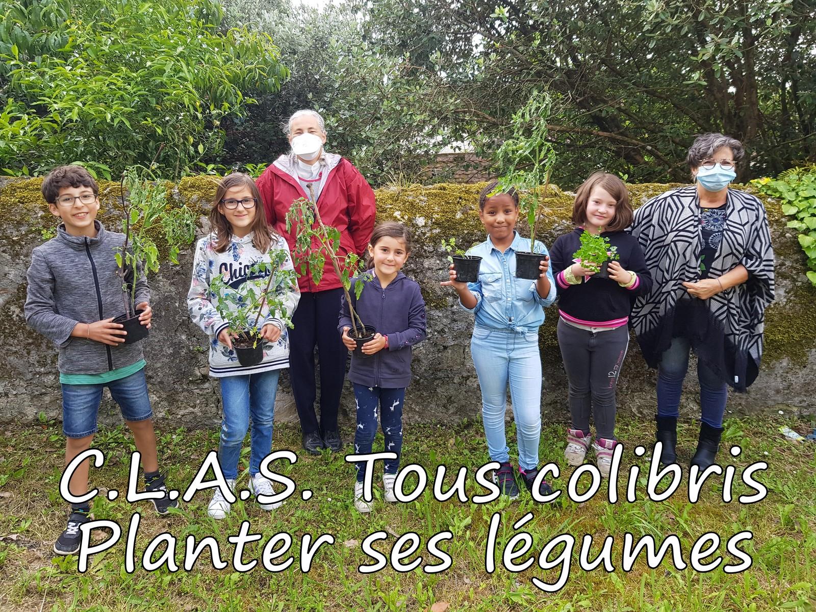 CLAS-Tous-Colibris-Planter-ses-legumes