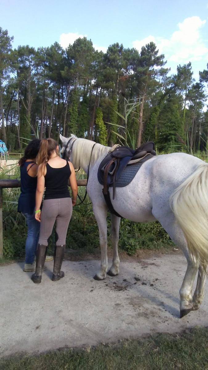 Faire à cheval 2018 (4) [1600x1200]