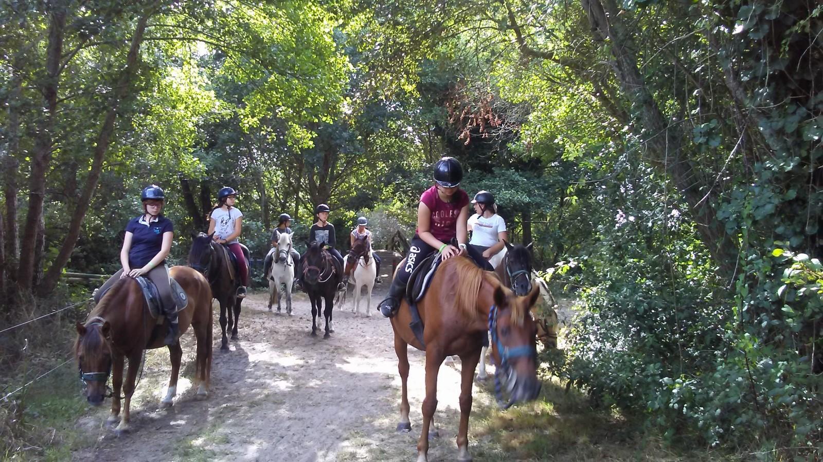 Faire à cheval 2018 (8) [1600x1200]